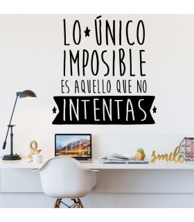 L'únic impossible