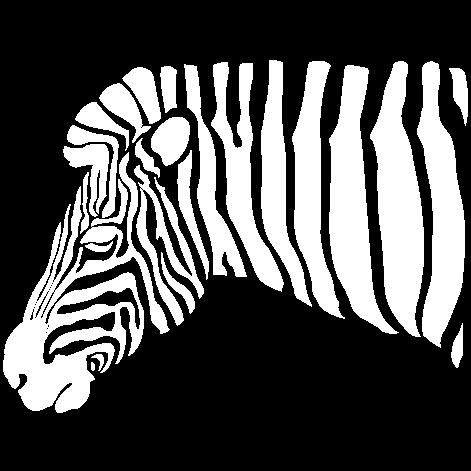 Vinilo decorativo Zebra